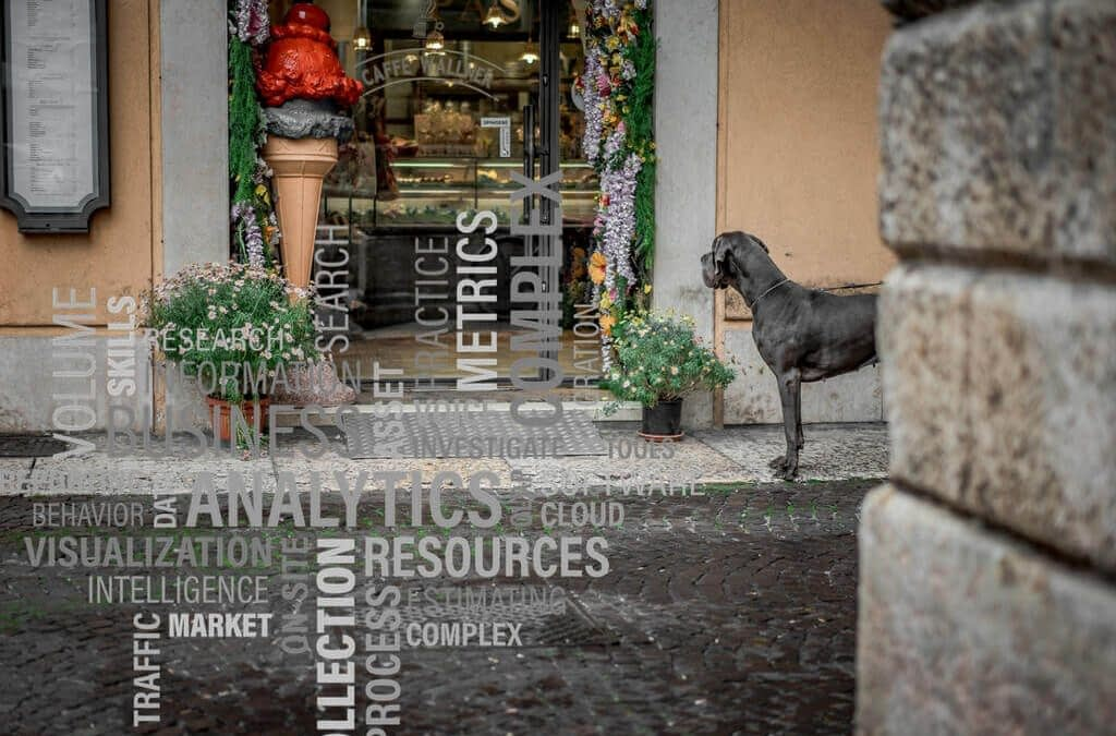 Analítica Web para Restaurantes | Otto Duarte